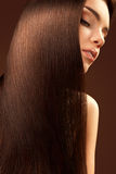 Brown Hair. Portrait of Beautiful Woman with Long Hair. High quality image Royalty Free Stock Photos