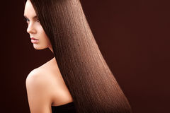 Brown Hair. Portrait of Beautiful Woman with Long Hair. High quality image Stock Photos