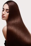 Brown Hair. Portrait of Beautiful Woman with Long Hair. High quality image Royalty Free Stock Photo
