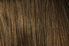 Brown hair. Shown in closeup, as a background Stock Photo