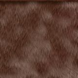 Brown hair texture Royalty Free Stock Images