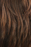 Brown hair texture royalty free stock photo