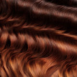 Brown Hair Texture. High quality image. Stock Images