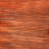 Brown Hair Texture. High quality image. Stock Photo