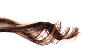 Brown hair on white background Royalty Free Stock Images