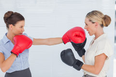 Brown haired businesswoman punching her blond colleague during b Stock Photography