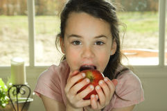 Brown haired child eating an apple Stock Images