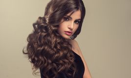 Brown haired woman with voluminous, shiny and curly hairstyle.Frizzy hair. Young brown haired woman with voluminous, shiny and wavy hair . Beautiful model with royalty free stock images