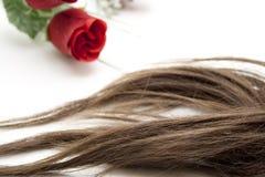 Brown hairpiece Stock Photos
