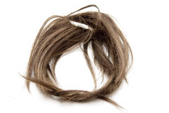 Brown hairpiece Stock Image