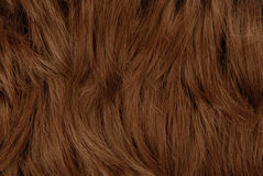 Brown  hairs, textured background Stock Photo