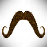 Brown Hairy Mustache Royalty Free Stock Photo
