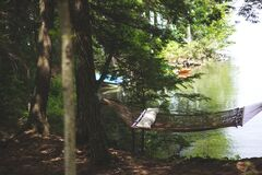 Brown Hammock Between 2 Brown Trees Beside Body of Water during Daytime Stock Photo