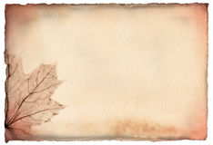 Brown hand-made paper with a maple leaf Royalty Free Stock Images