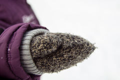 Brown-Handschuh Lizenzfreie Stockbilder