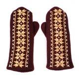 Brown-Handschuhe Stockbild