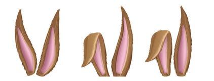 Brown-Hasenohrsammlung für Ostern und Kostüm Stockbild