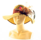 Brown hat with Feather and Rose Royalty Free Stock Photo