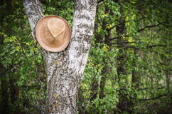 A brown hat Stock Photo
