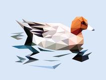 Brown head duck swim on the ripple blue water low polygon. Style Stock Image