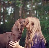 Brown hear girl kissing dog stock photo