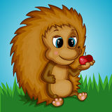 Brown Hedgehog with Apple on the Grass Royalty Free Stock Image