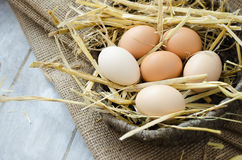 Brown hen eggs in a basket royalty free stock photography