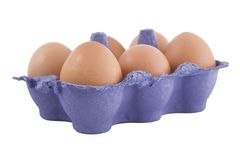 Brown hens eggs in blue egg carton Royalty Free Stock Photography