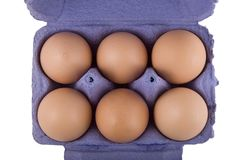 Brown hens eggs in blue egg carton Royalty Free Stock Photos