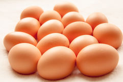 Brown hens Eggs in a group Stock Photo