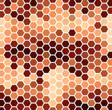 Brown Hexagonal Pattern Stock Images