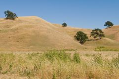 Brown hills Stock Image