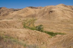 Brown hills Stock Photography