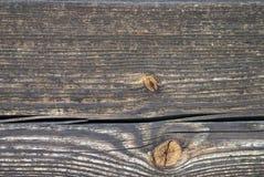 Brown-Holzbeschaffenheit Lizenzfreies Stockbild