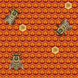 BROWN HONEYCOMB AND BEES TEXTURE SEAMLESS PATTERN BACKGROUND. This yummy tileable pattern of brown hexagonal honeycomb and bees can be used for wallpapers vector illustration
