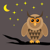 Brown horned owl on a dried branch. Night, moon, star. Brown horned owl on a black dry tree branch at night royalty free illustration