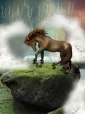 Brown horse. In a cliff Royalty Free Stock Photo