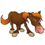 Brown Horse. Highly detailed cartoon animal stock illustration