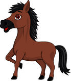 Brown horse cartoon Stock Photos