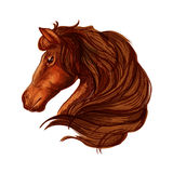 Brown horse head with wavy mane portrait. Horse with long wavy and long mane. Portrait of brown bay stallion with shiny eyes and kind glance Royalty Free Stock Image