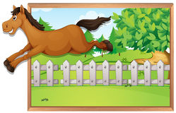 Brown horse jumping over the fence. Illustration Stock Images