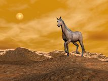 Brown horse on the mountain - 3D render. Beautiful brown horse standing on a hill in the mountain with snow by night Stock Images