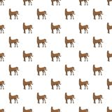 Brown horse pattern seamless stock illustration