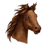 Brown horse portrait with waving mane. Horse artistic portrait. Beautiful brown mustang with long wavy mane and gazing shiny eyes Stock Photo