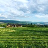 Brown house on grassy farm field. Lush green farm field with brown house and mountains in background Stock Image