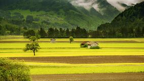 Brown House in the Middle of Green Field Grass Near Mountains Stock Photos