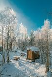 Brown House Near Snow Covered Tree royalty free stock images
