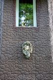 Brown house wall with window and decorative souvenir owl. An artificial owl on the brown wall of a house by the window Royalty Free Stock Image