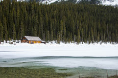 Brown House on White Snowfield Near Green Pine Tree during Day Time Royalty Free Stock Image