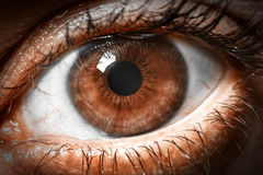 Brown human eye extreme macro shot Stock Images